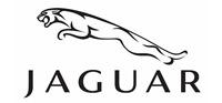 jaguar-rulevaya-reika
